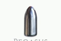 01-Pegasus